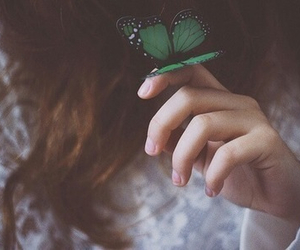 butterfly, green, and vintage image