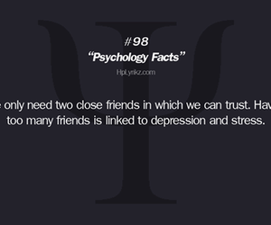 friends, fact, and friendship image