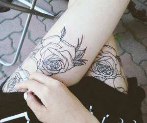 black, legs, and roses image