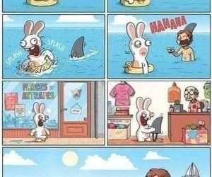 funny, rabbit, and shark image