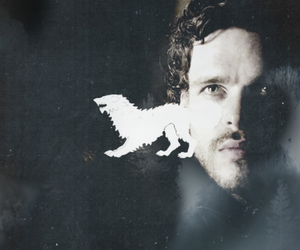 stark, game of thrones, and direwolf image