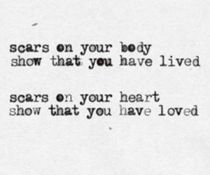 quote, love, and scars image