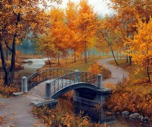 autumn, bridge, and fall image
