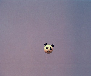 baloon, panda, and blue sky image