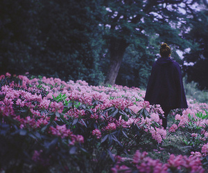 alone, girl, and fields of flowers image