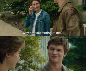 the fault in our stars, tfios, and divergent image