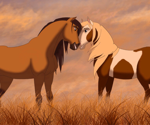 horse, spirit, and love image
