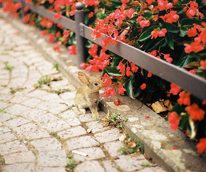flowers, vintage, and animal image