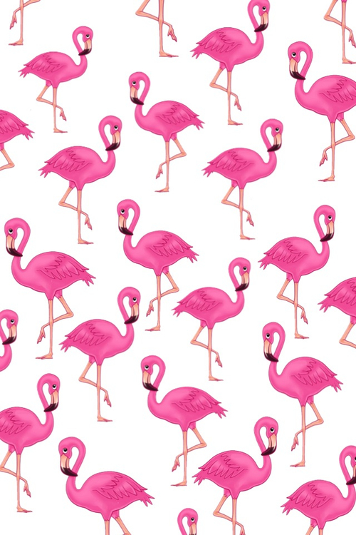 Flamingo Shared By Tori On We Heart It