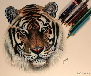 drawing, animal, and art image