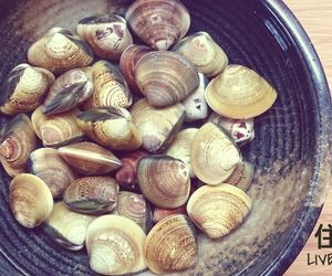 clam and seafood image