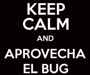 bug, keep calm, and willy image