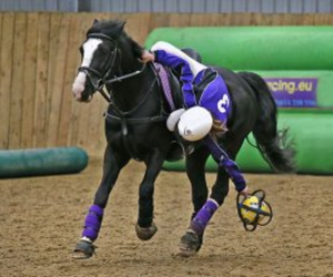 ball, black, and horse image
