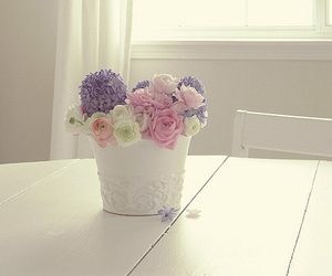 flowers, white, and pastel image