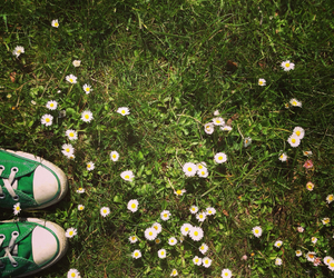 converse, flower, and green image