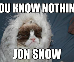 stark, game of thrones, and jon snow image