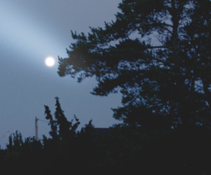 night, indie, and moon image