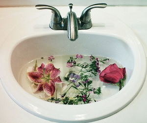 flowers, water, and sink image