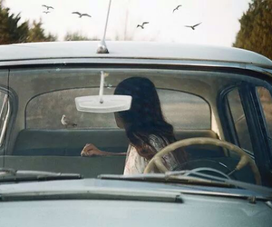 car, bird, and vintage image