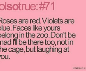 funny, rose, and zoo image