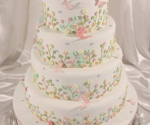 butterfly and wedding cake image