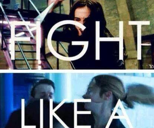 divergent, fight, and book image