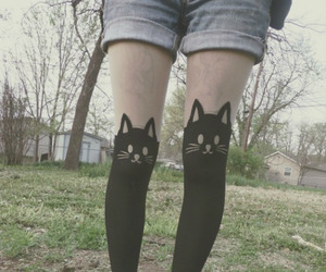 alternative, cat, and clothes image