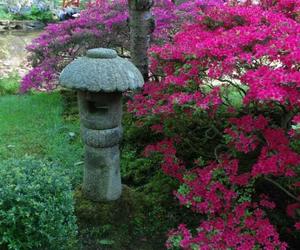 japanse tuin image
