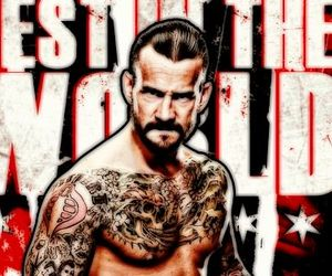 superstar, wwe, and cm punk image