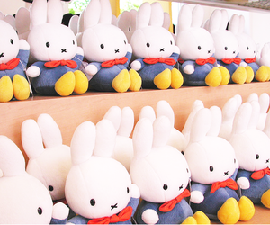 cute, bunny, and miffy image