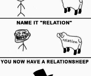 funny, sheep, and lol image