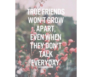 friends, love, and quotes image