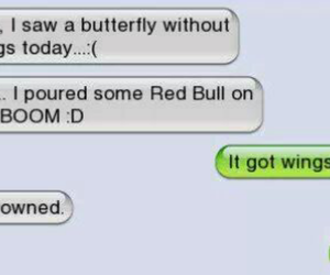 butterfly, funny, and redbull image