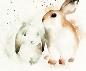 bunnies image