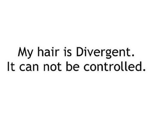 divergent, hair, and funny image