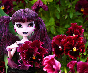 canon, flowers, and pansies image