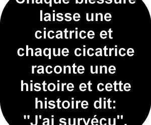 histoire and cicatrice image