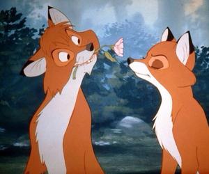 renard renarde rox image