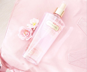 pink, perfume, and pastel image