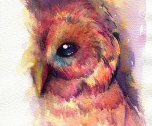art, owl, and painting image