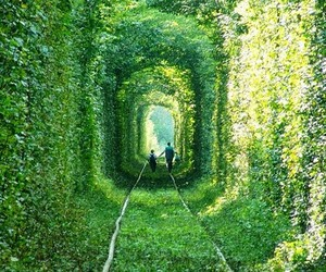 green, ukraine, and tunnel of love image