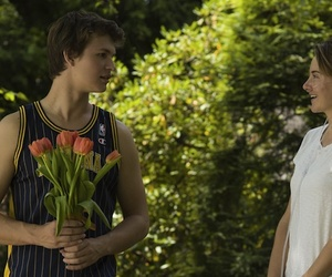 the fault in our stars, movie, and augustus image