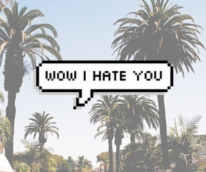 hate, grunge, and summer image