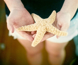 hands, stars, and vintage image