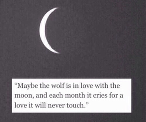 quote, sad, and wolf image