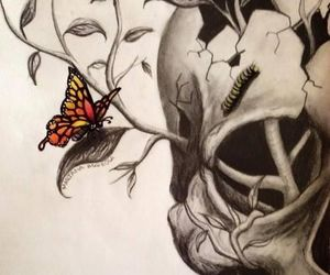 skull, butterfly, and drawing image