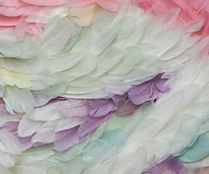 feather, pastel, and pink image