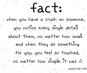 crush, love, and facts image