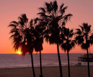 beach, california, and los angeles image