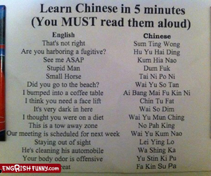 funny, chinese, and lol image